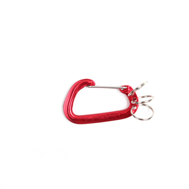 Uniform Expirement Carabiner -6