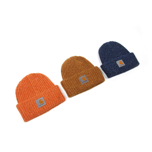 Carhartt Work In Progress Anglistic Beanie-12